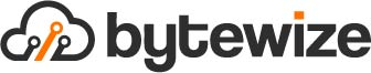 Bytewize IT Consulting